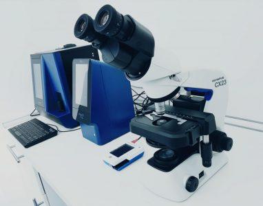 Biochimie, Hematologie, examen microscopic si analiza urina